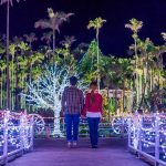 東南植物楽園 ひかりの散歩道2019