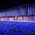 沖縄こどもの国 クリスマスファンタジー